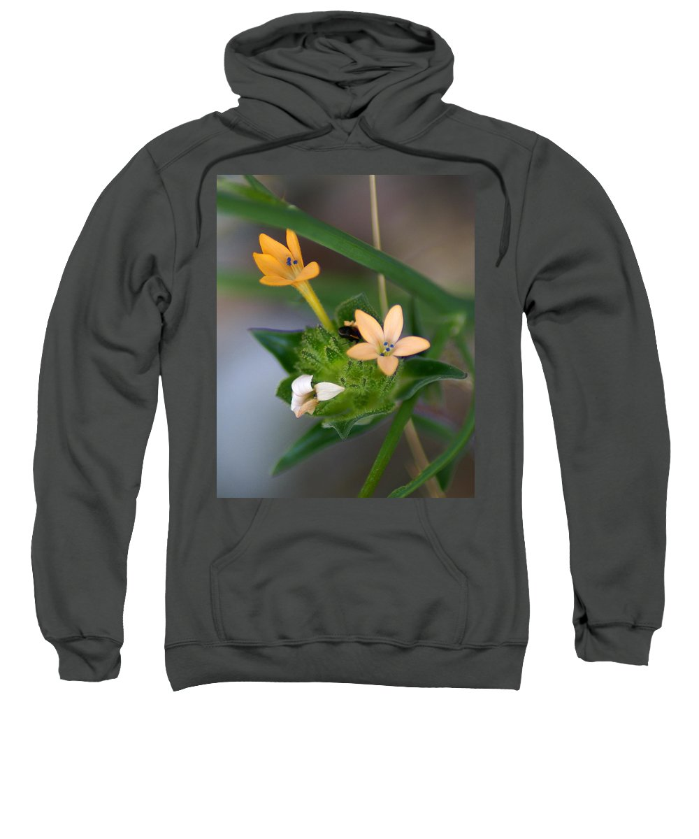 Flowers Sweatshirt featuring the photograph Tiny Flowers by Ben Upham III