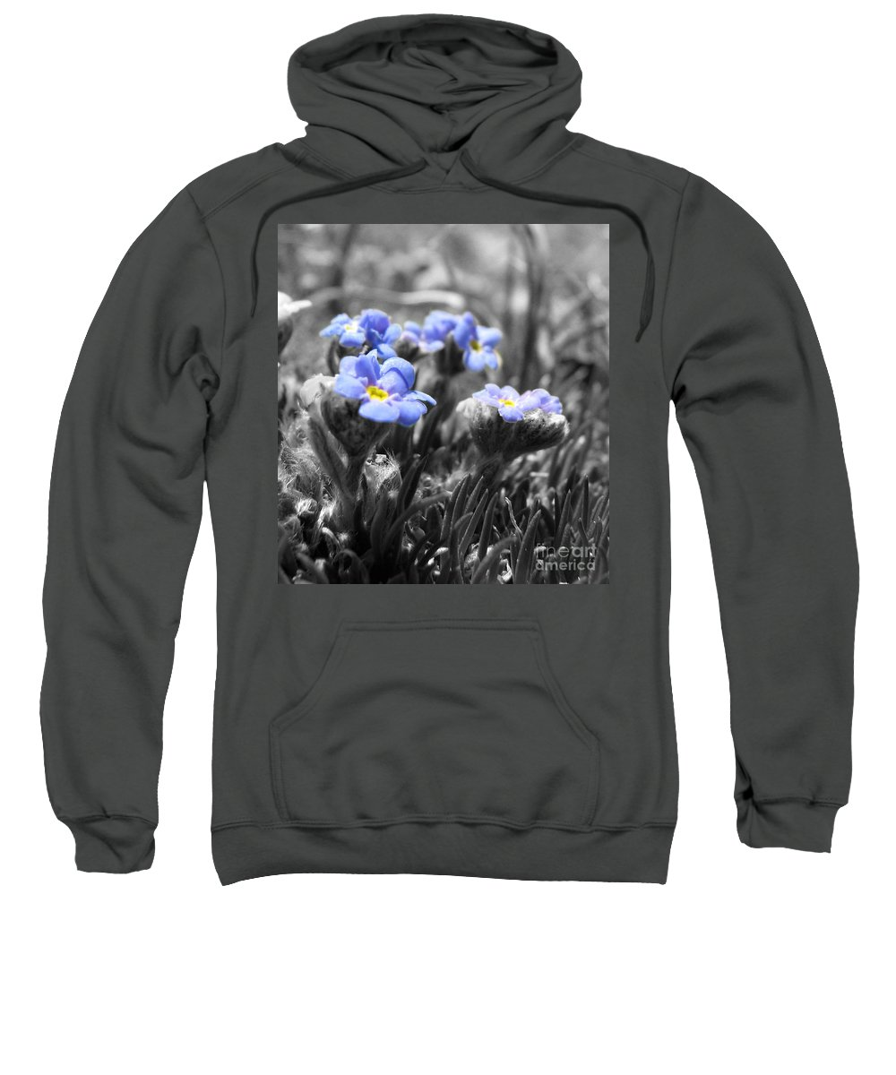 Flowers Sweatshirt featuring the photograph Tiny Gems by Amanda Barcon