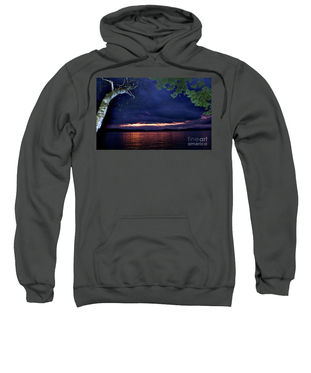 Scenic Tours Sweatshirt featuring the photograph To Flash Or Not by Skip Willits
