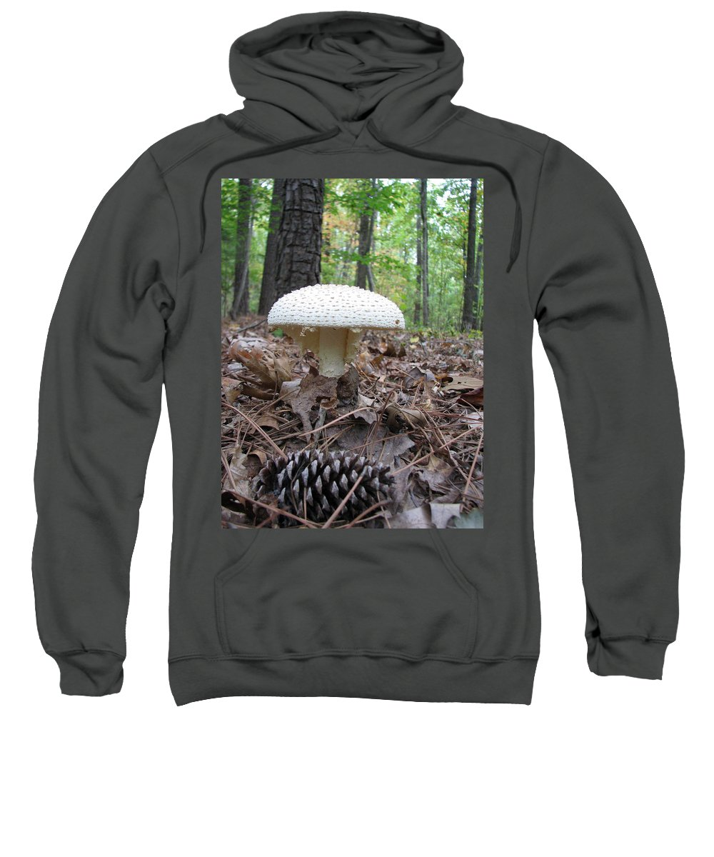 Mushroom Sweatshirt featuring the photograph Toad Stool V by Stacey May