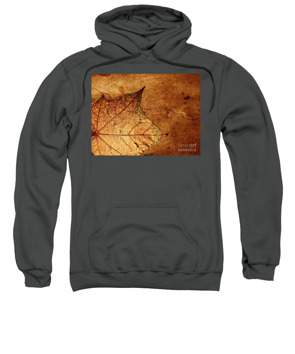 Autumn Sweatshirt featuring the photograph Today Everything Changes by Dana DiPasquale