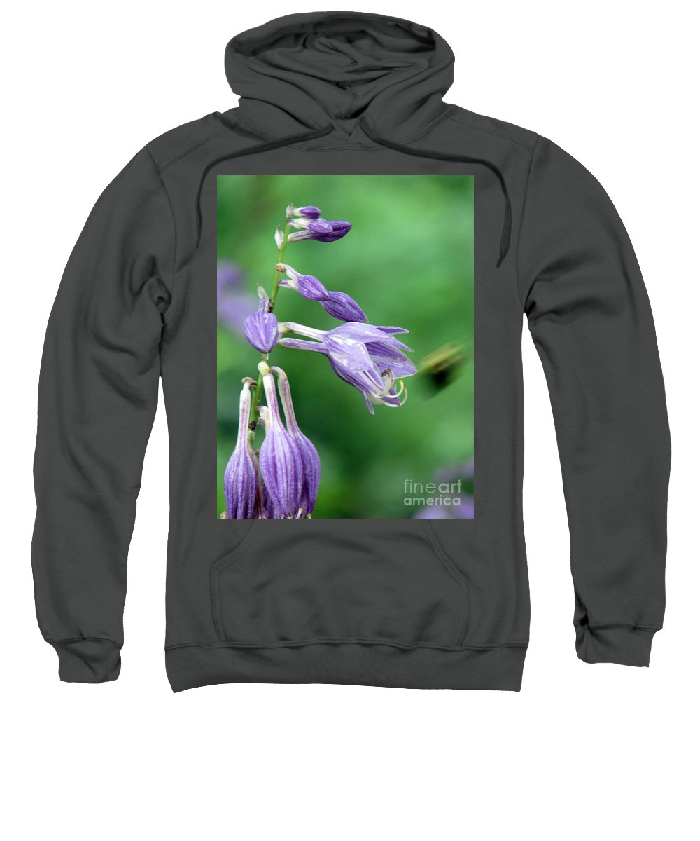 Bees Sweatshirt featuring the photograph Too Busy To Notice by Amanda Barcon