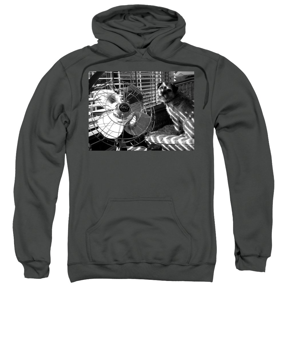Electric Fan Sweatshirt featuring the photograph Toto Checks In by Charles Stuart