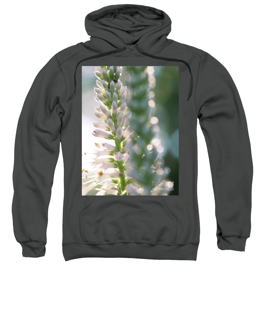 Ohio Flower Sweatshirt featuring the photograph Towering Flowers by Michelle Himes