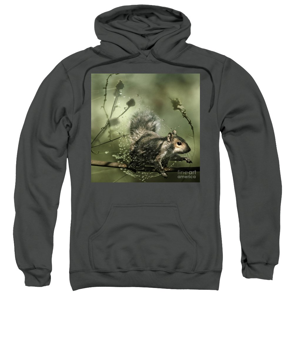 Cobweb Sweatshirt featuring the photograph Trapped by Angel Ciesniarska