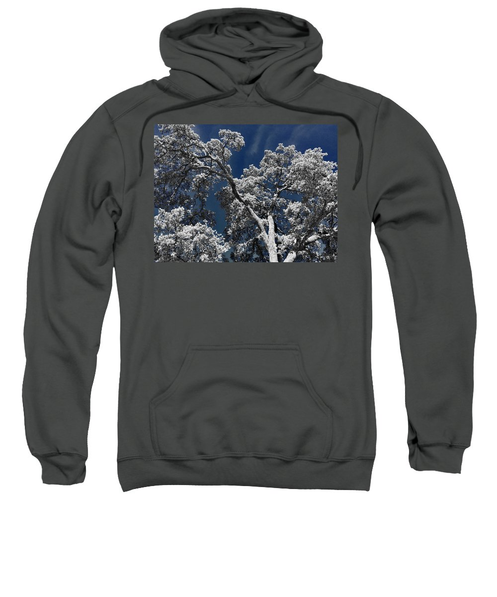 Oak Tree Sweatshirt featuring the photograph Trapped In Ice by Douglas Craig