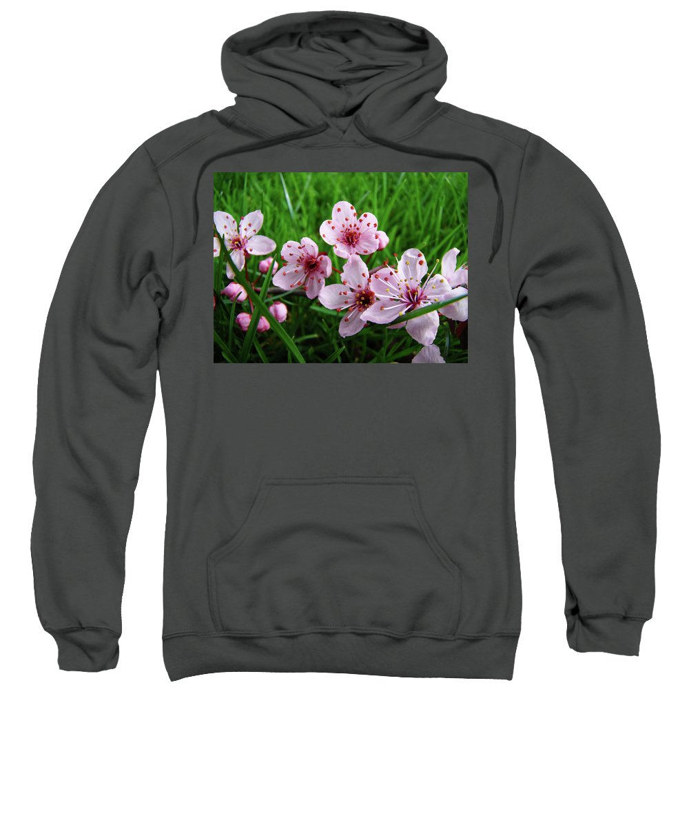�blossoms Artwork� Sweatshirt featuring the photograph Tree Blossoms 4 Spring Flowers Art Prints Giclee Flower Blossoms by Baslee Troutman