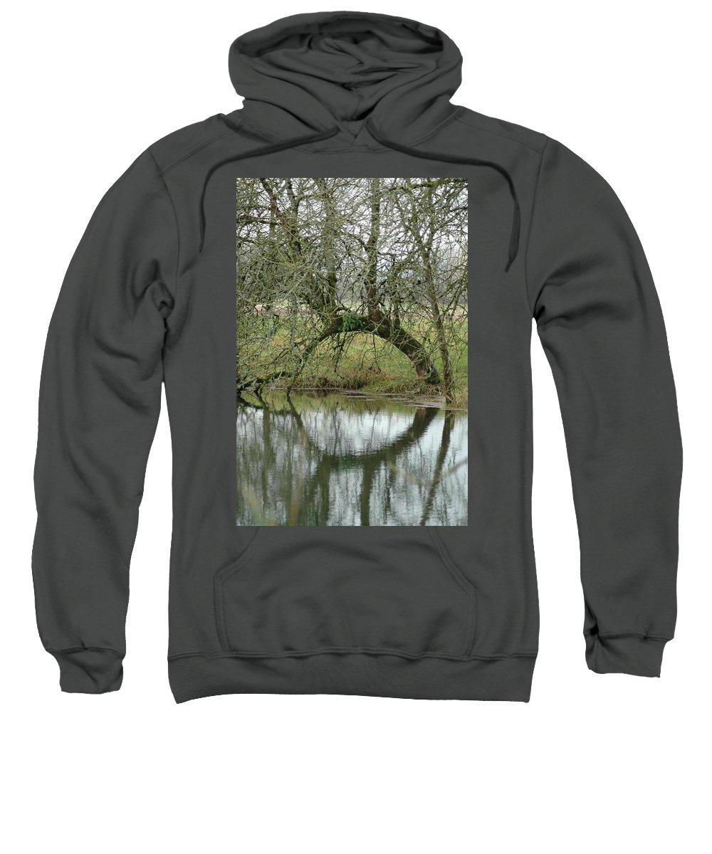 Tree Sweatshirt featuring the photograph Tree Cannon by Sara Stevenson