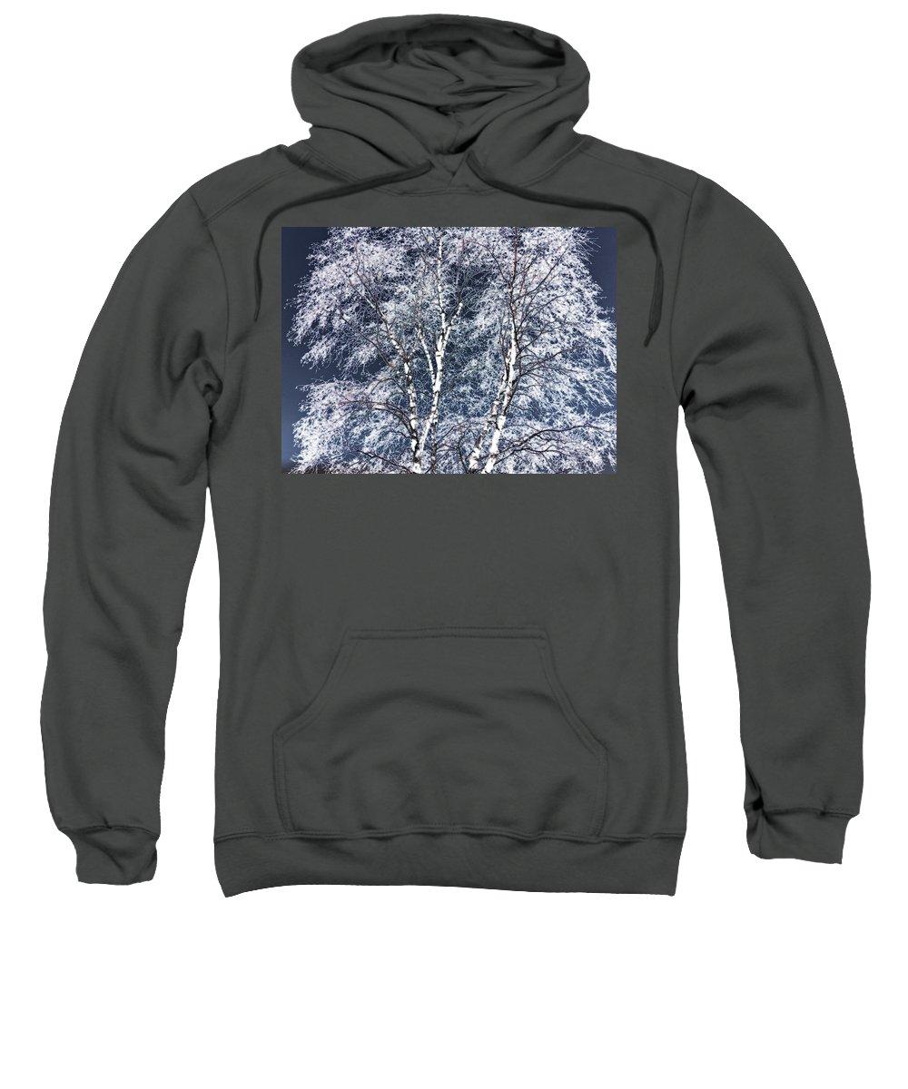 Tree Sweatshirt featuring the digital art Tree Fantasy 14 by Lee Santa