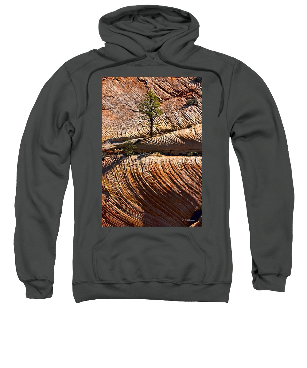 Zion Sweatshirt featuring the photograph Tree In Flowing Rock by Christopher Holmes