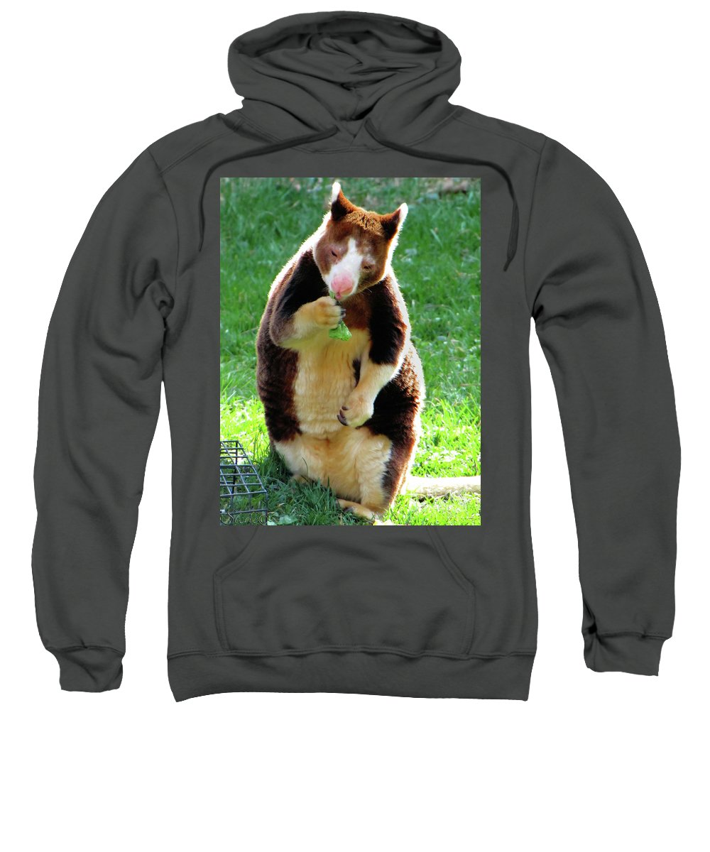 Tree Kangaroo Sweatshirt featuring the photograph Tree Kangaroo by September Stone