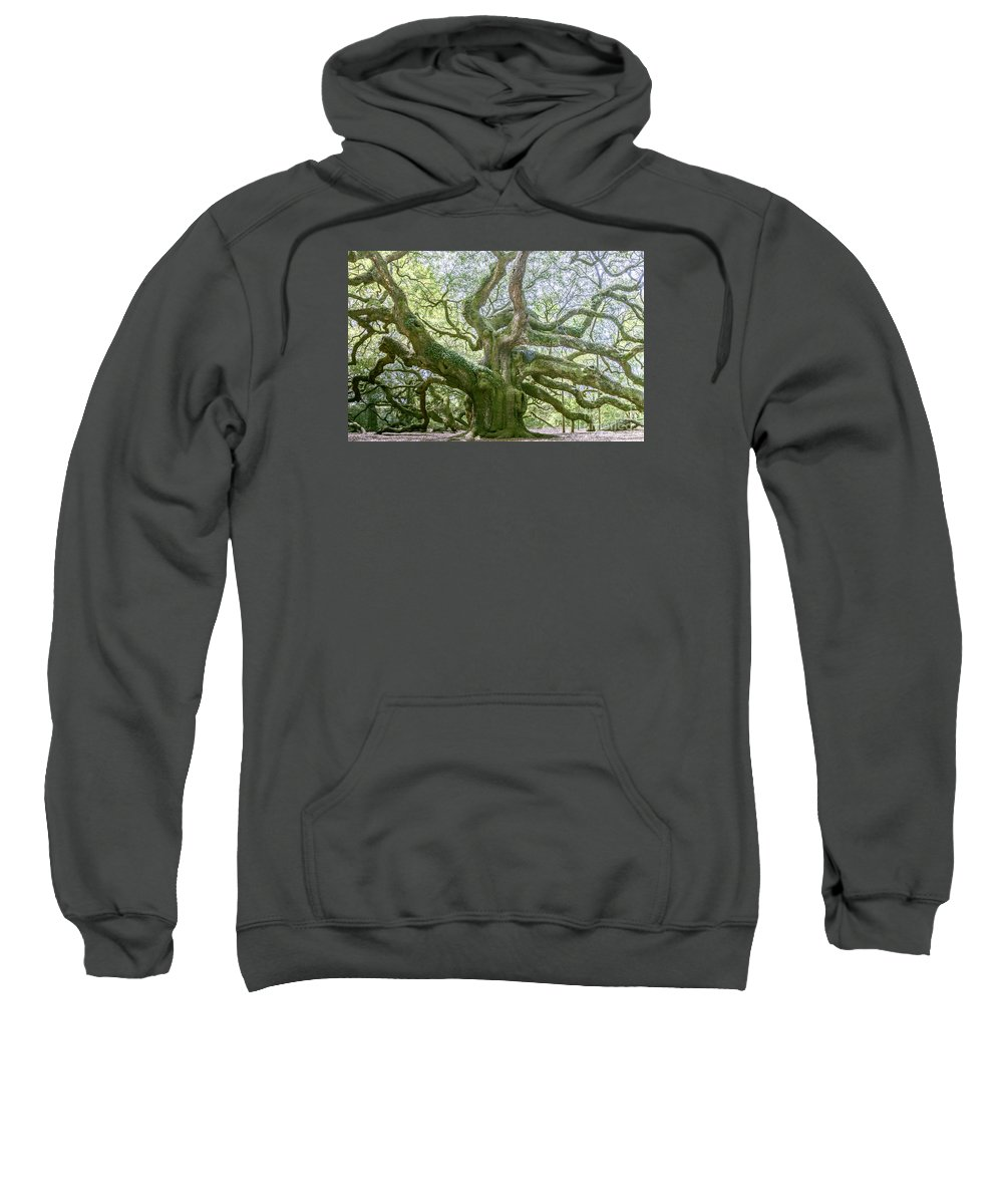 South Carolina Sweatshirt featuring the photograph Tree Of History by Elvis Vaughn