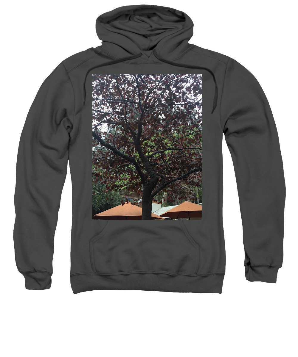Tree Color Landscape Art Texture Shadow Sweatshirt featuring the photograph Tree by Russell Keating