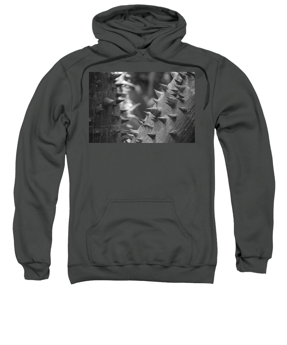 Spike Sweatshirt featuring the photograph Tree With Spikes And Thorns by Rob Hans