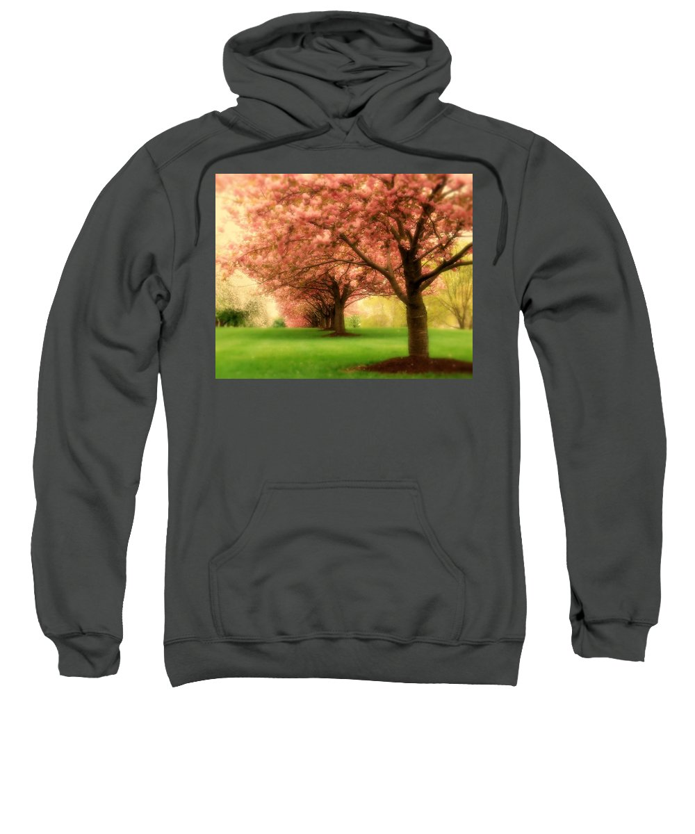 Cherry Blossom Trees Sweatshirt featuring the photograph Trees In A Row by Angie Tirado