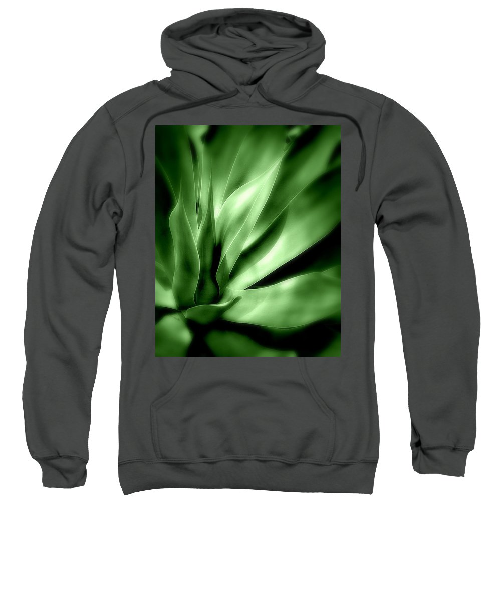 Plant Sweatshirt featuring the photograph Tropical Plant by Perry Webster