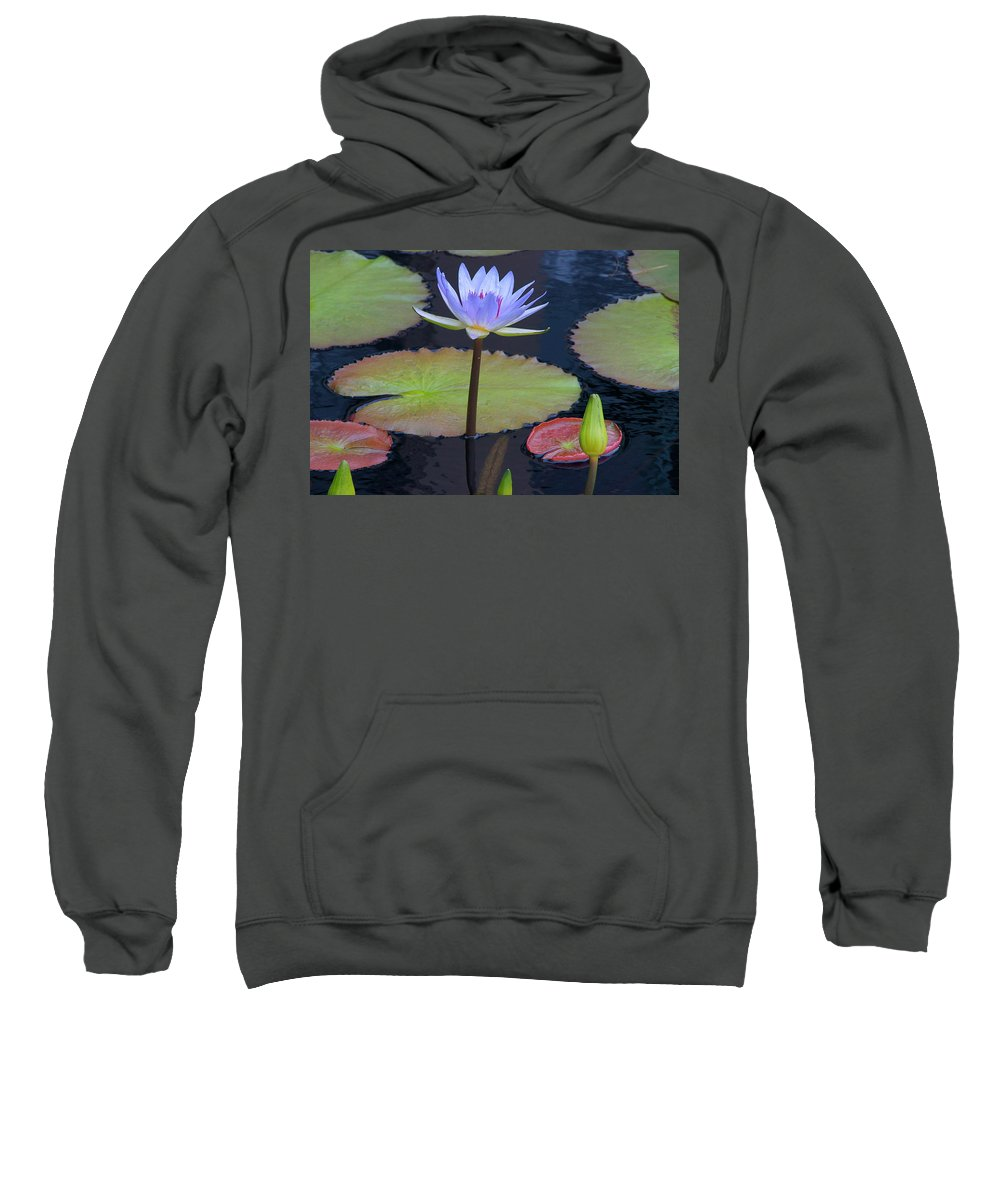 Lily Sweatshirt featuring the photograph Tropical Water Colors by Byron Varvarigos