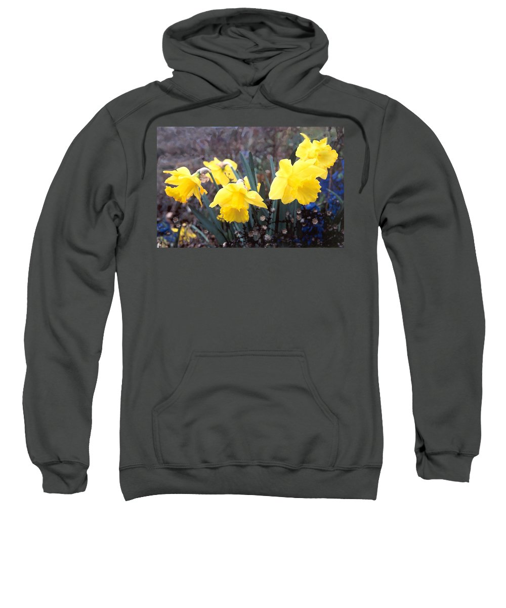Flowes Sweatshirt featuring the photograph Trumpets Of Spring by Steve Karol