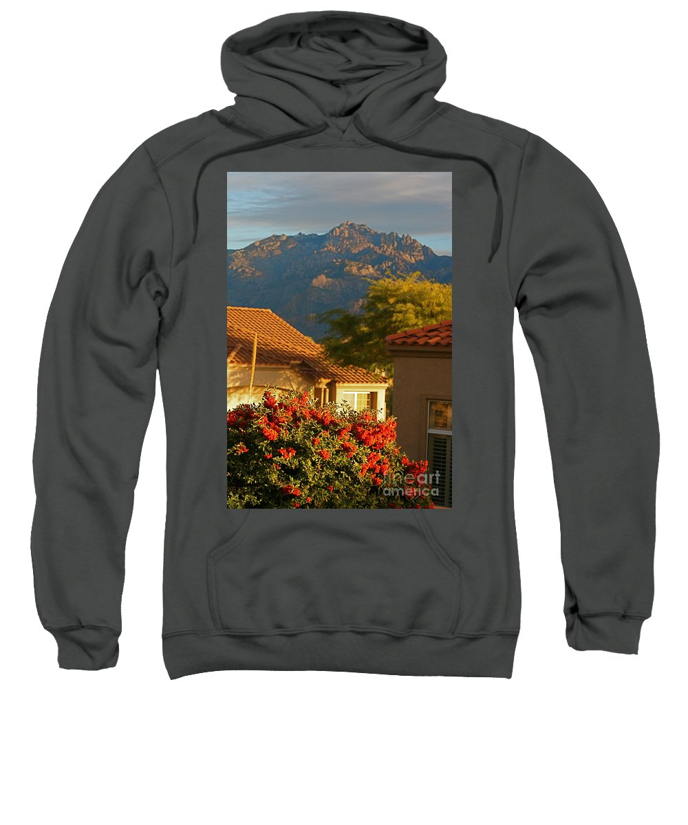 Mountains Sweatshirt featuring the photograph Tucson Beauty by Nadine Rippelmeyer