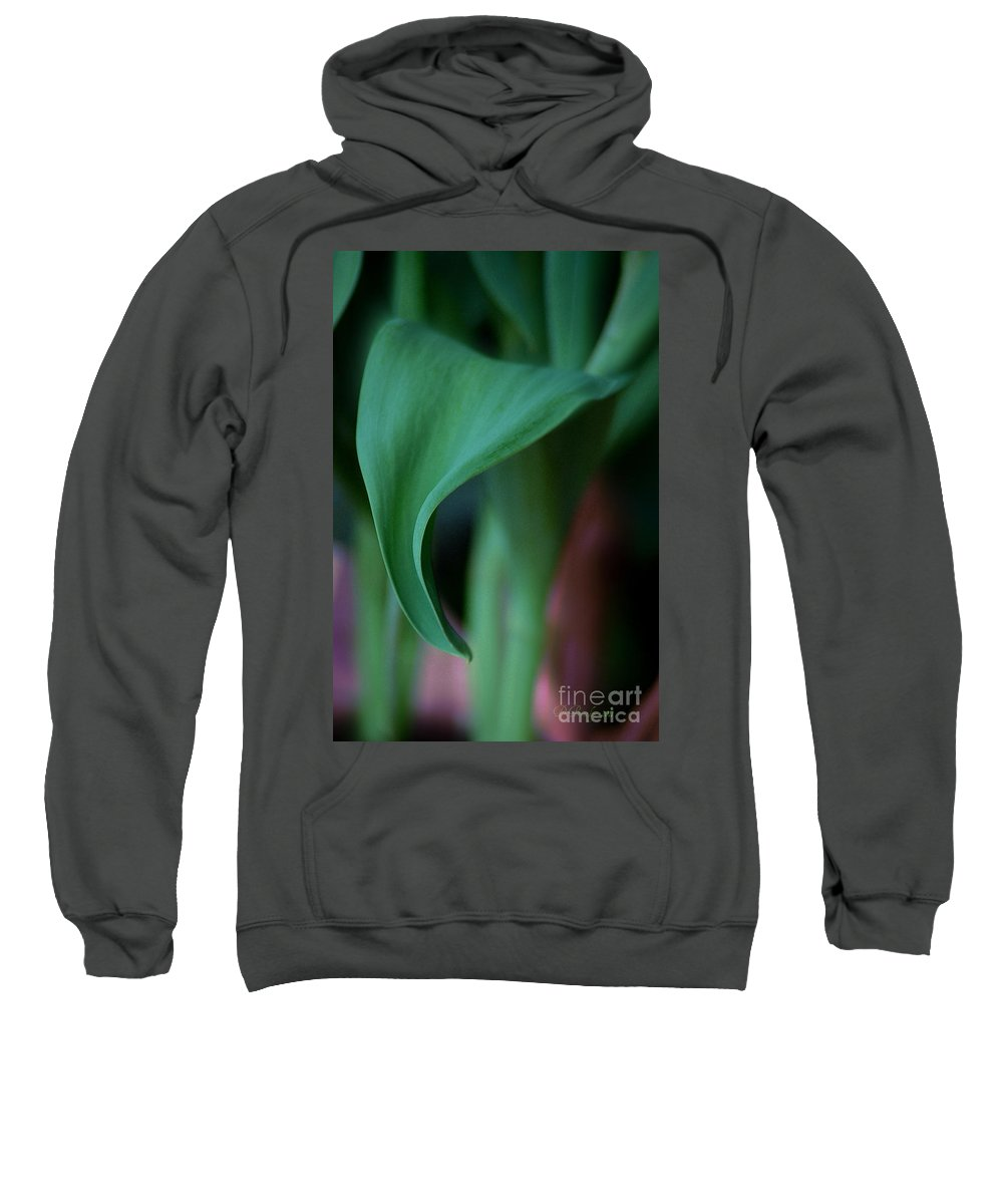 Leaves Sweatshirt featuring the photograph Tulip Leaves by Donna Bentley