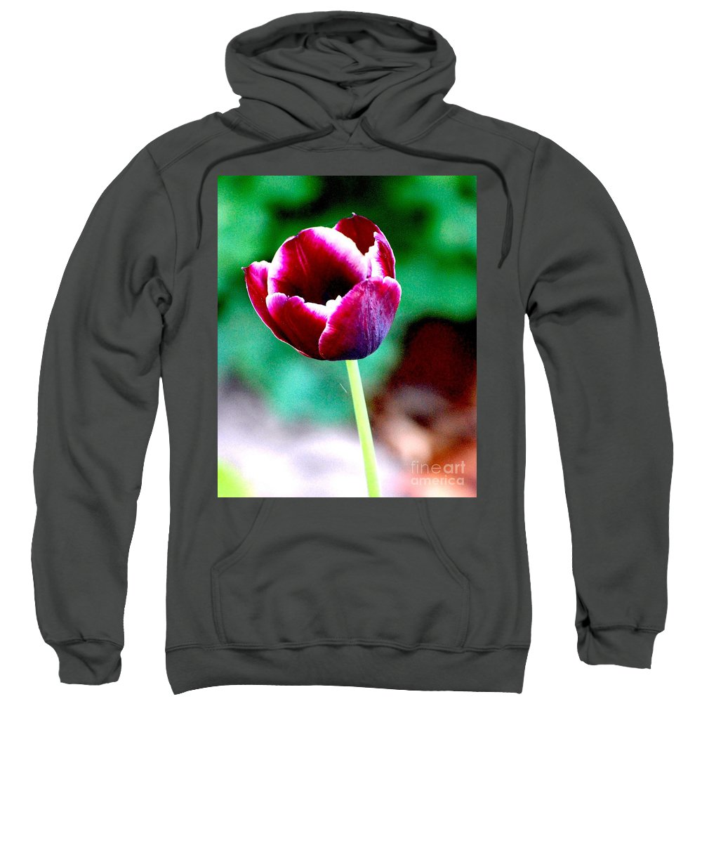 Digital Photo Sweatshirt featuring the photograph Tulip Me by David Lane