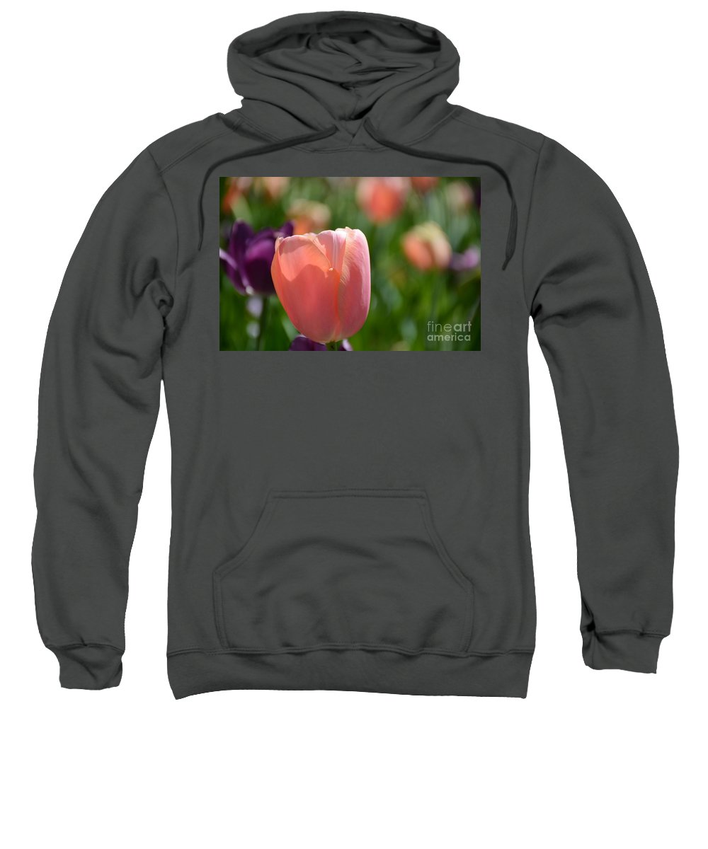 Sweatshirt featuring the painting Tulip Pink by Constance Woods