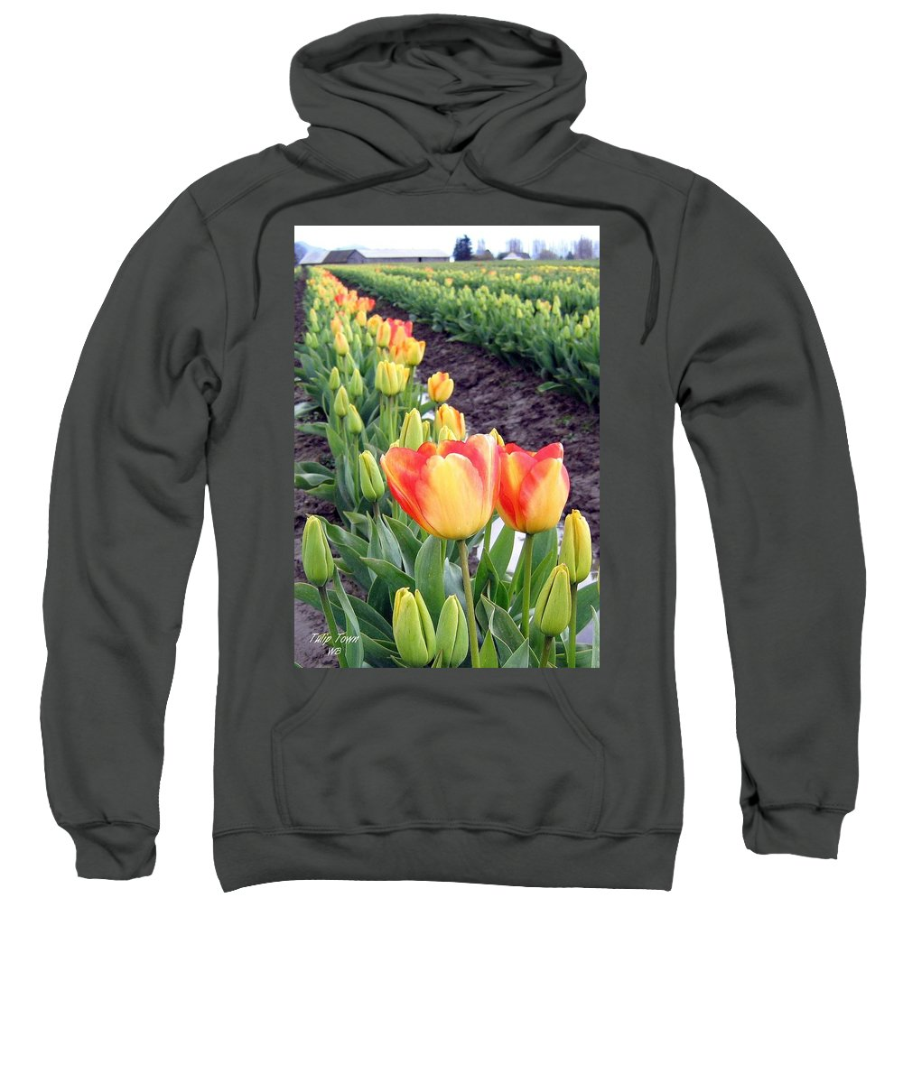 Agriculture Sweatshirt featuring the photograph Tulip Town 6 by Will Borden