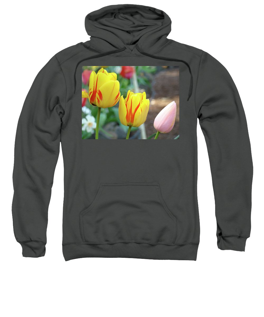 Tulip Sweatshirt featuring the photograph Tulips Garden Art Prints Yellow Red Tulip Flowers Baslee Troutman by Baslee Troutman