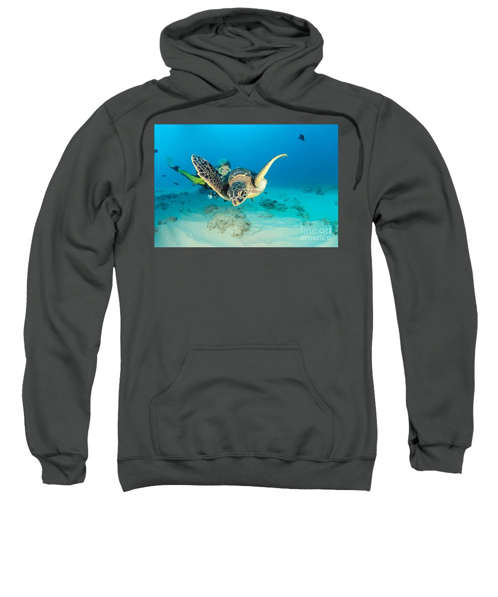 Caucasian Sweatshirt featuring the photograph Turtle And Diver by Dave Fleetham - Printscapes