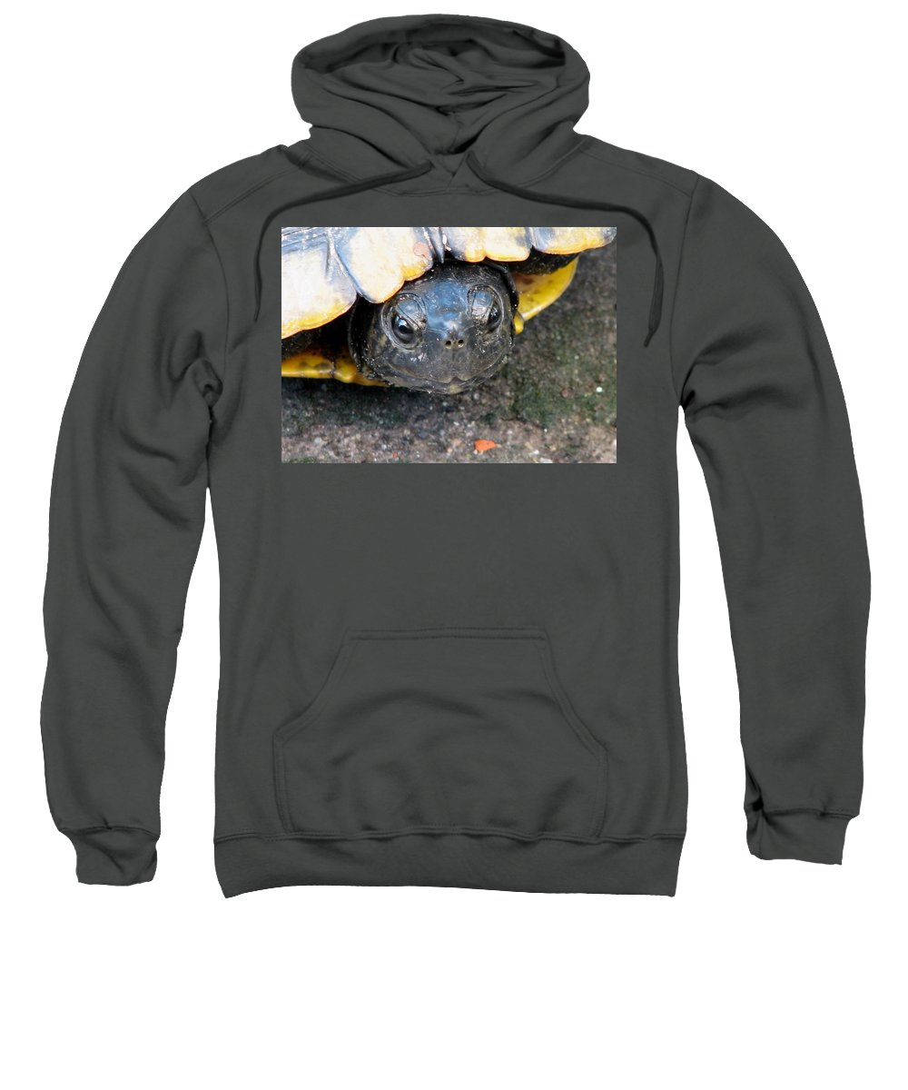 Turtle Sweatshirt featuring the photograph Turtle Smile by J M Farris Photography