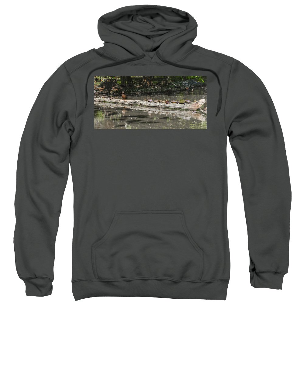 Turtles Sweatshirt featuring the photograph Turtles Sunning On A Log by Bill Cannon