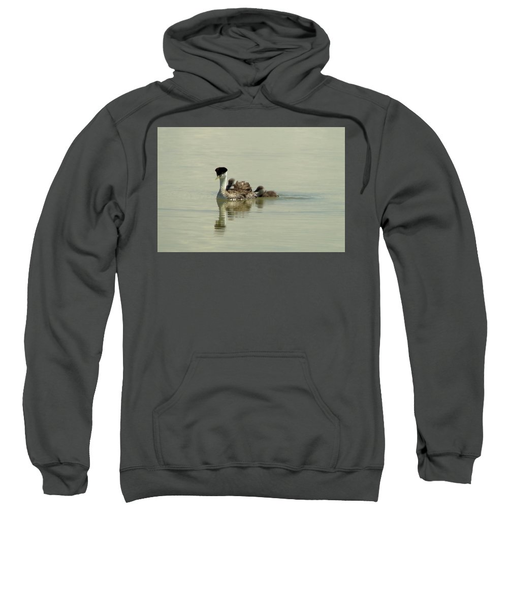 Greb Sweatshirt featuring the photograph Two Babies An Mother by Jeff Swan
