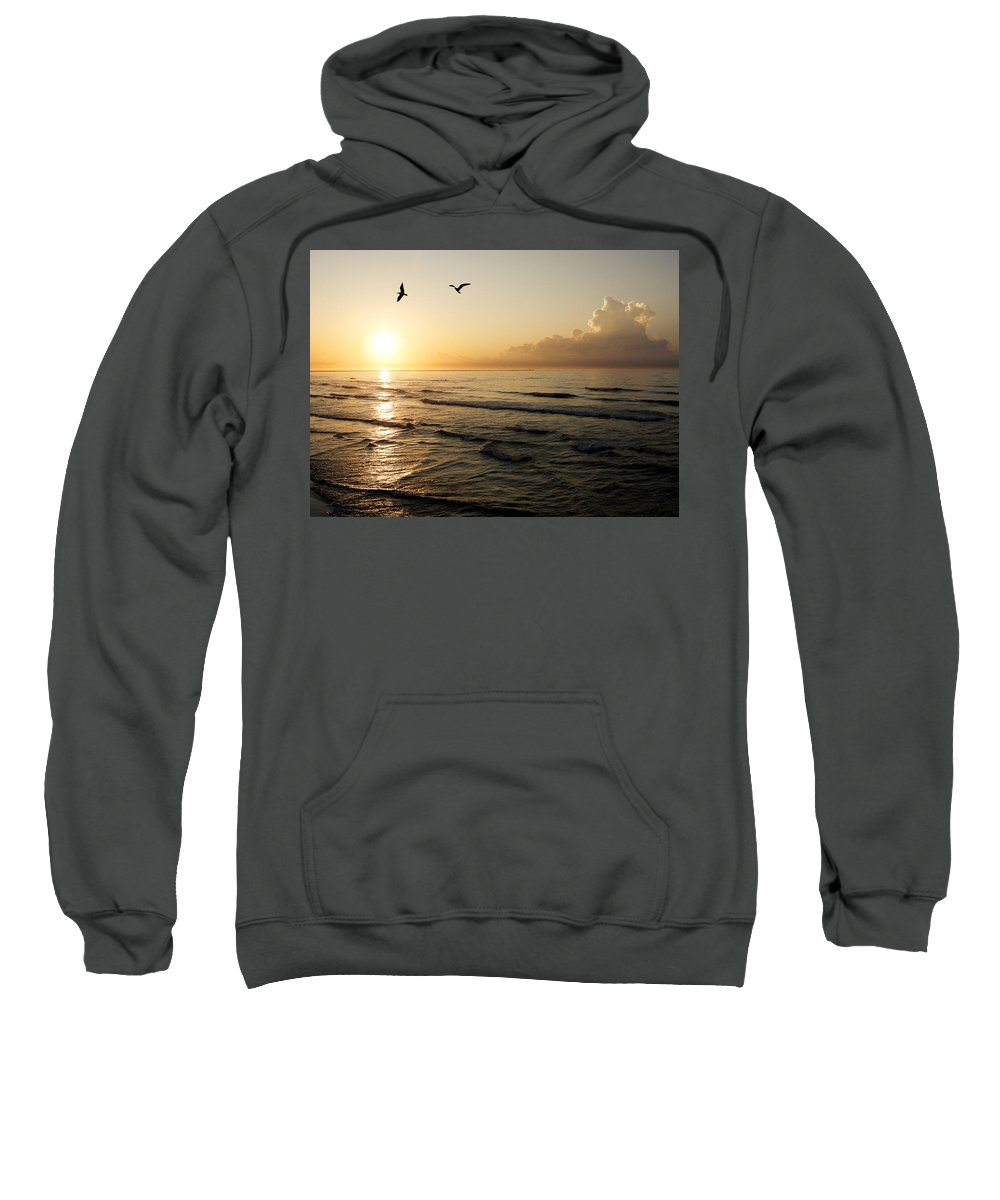 Beach Sweatshirt featuring the photograph Two Birds At Breakast by Marilyn Hunt