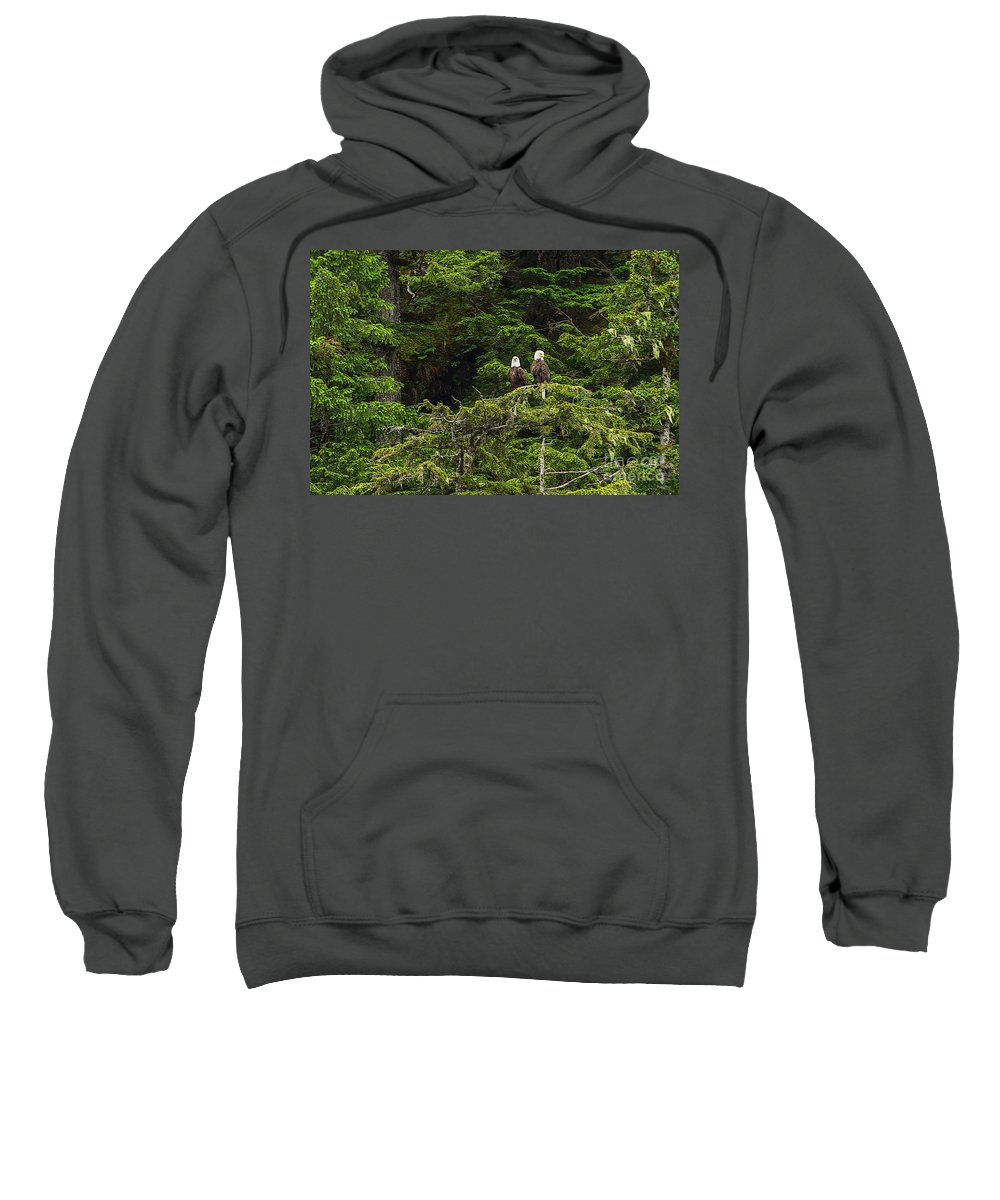 Alaska Sweatshirt featuring the photograph Two Eagles Perched Painterly by Jennifer White