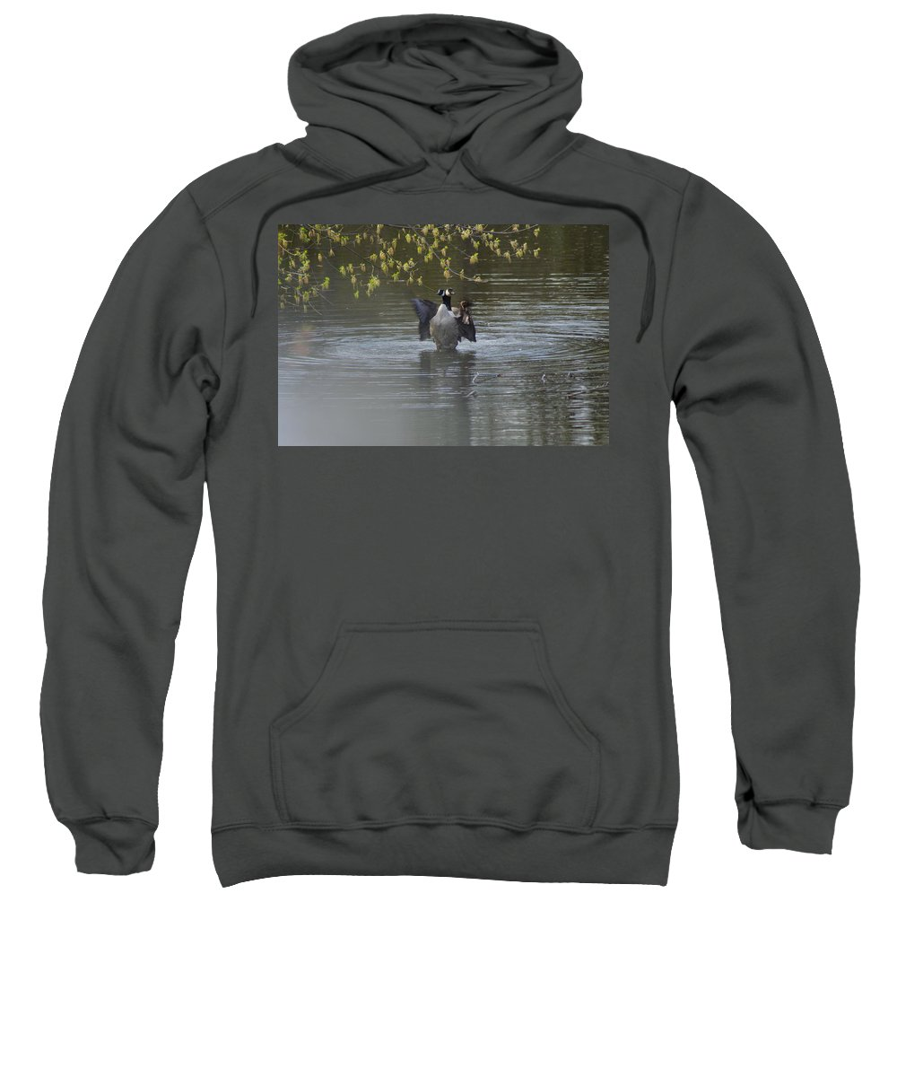 Geese Sweatshirt featuring the photograph Two Geese On A Pond by Alice Markham