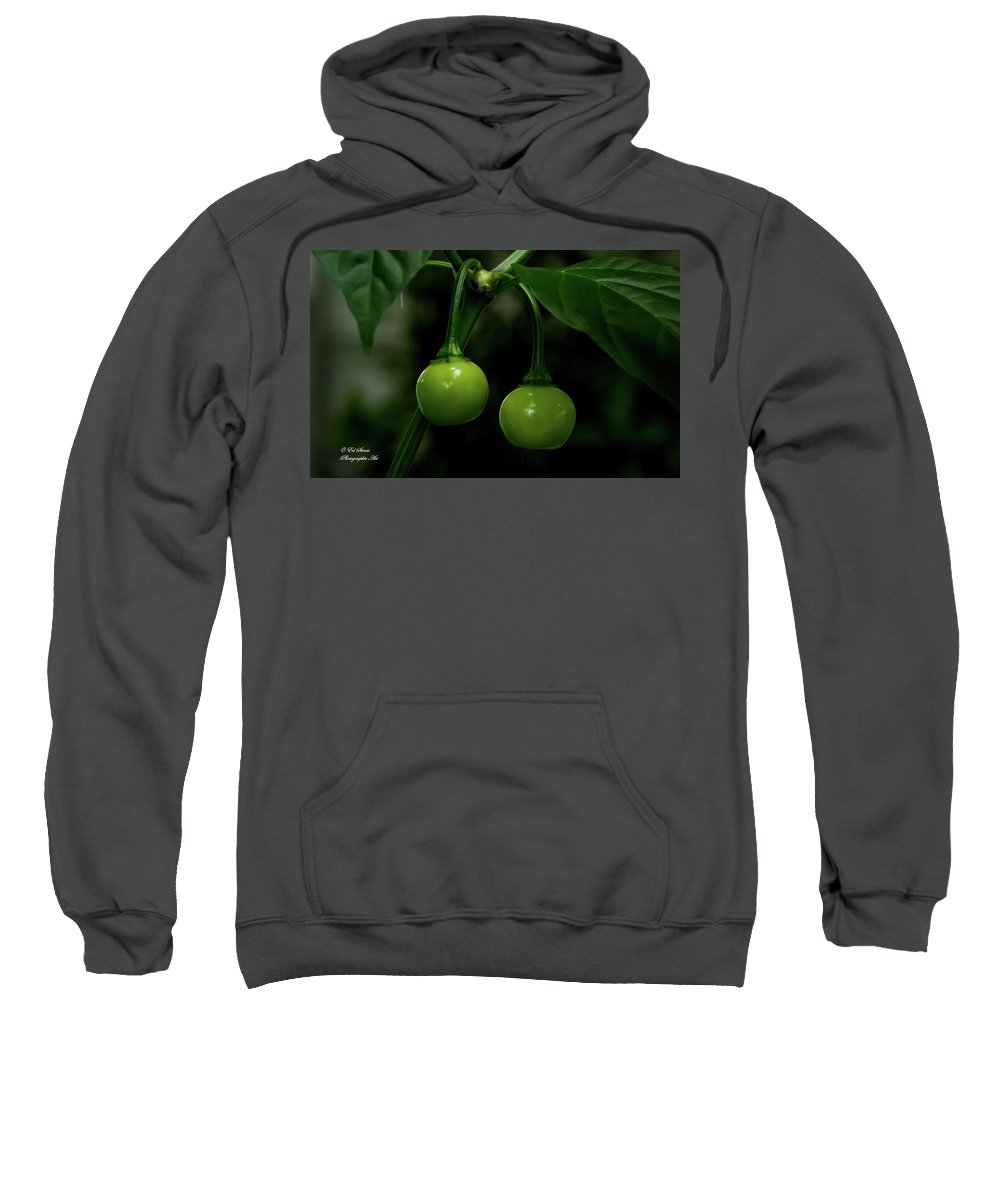 Green Sweatshirt featuring the digital art Two Peppers by Ed Stines
