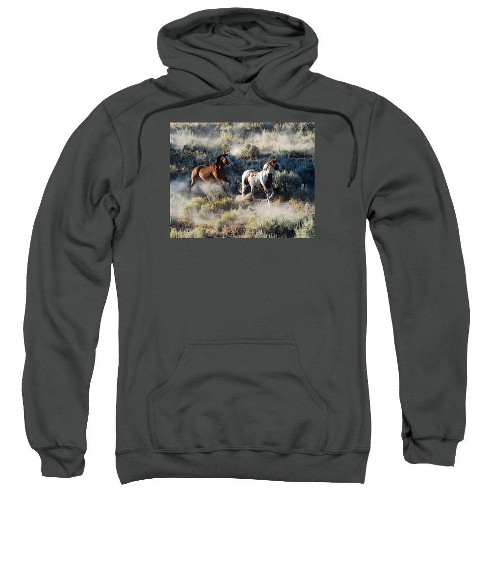 Horses Sweatshirt featuring the photograph Two Running Horses by JOANNE McCubrey