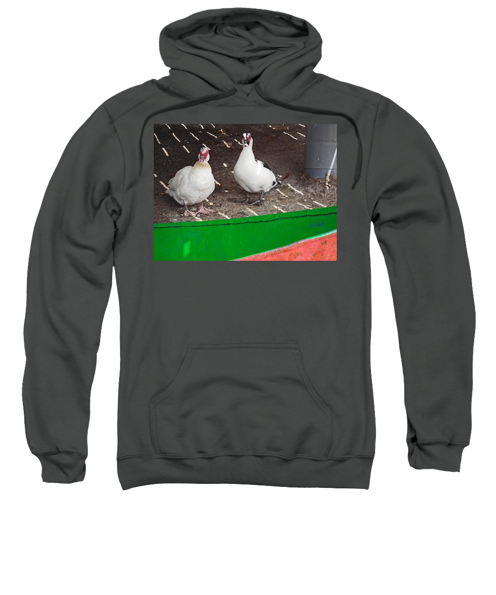 Boat Sweatshirt featuring the photograph Under The Boardwalk 5 by Charles Stuart