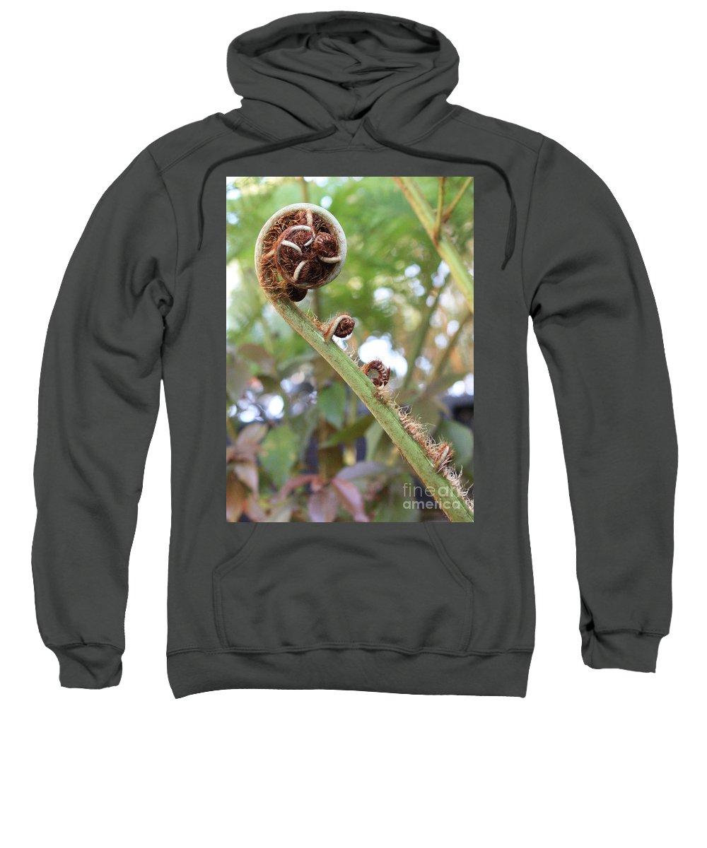 Nature Sweatshirt featuring the photograph Unfurling by Carol Groenen