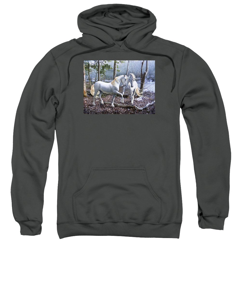 Unicorn Sweatshirt featuring the photograph Unicorn Reunion by Barbara Hymer