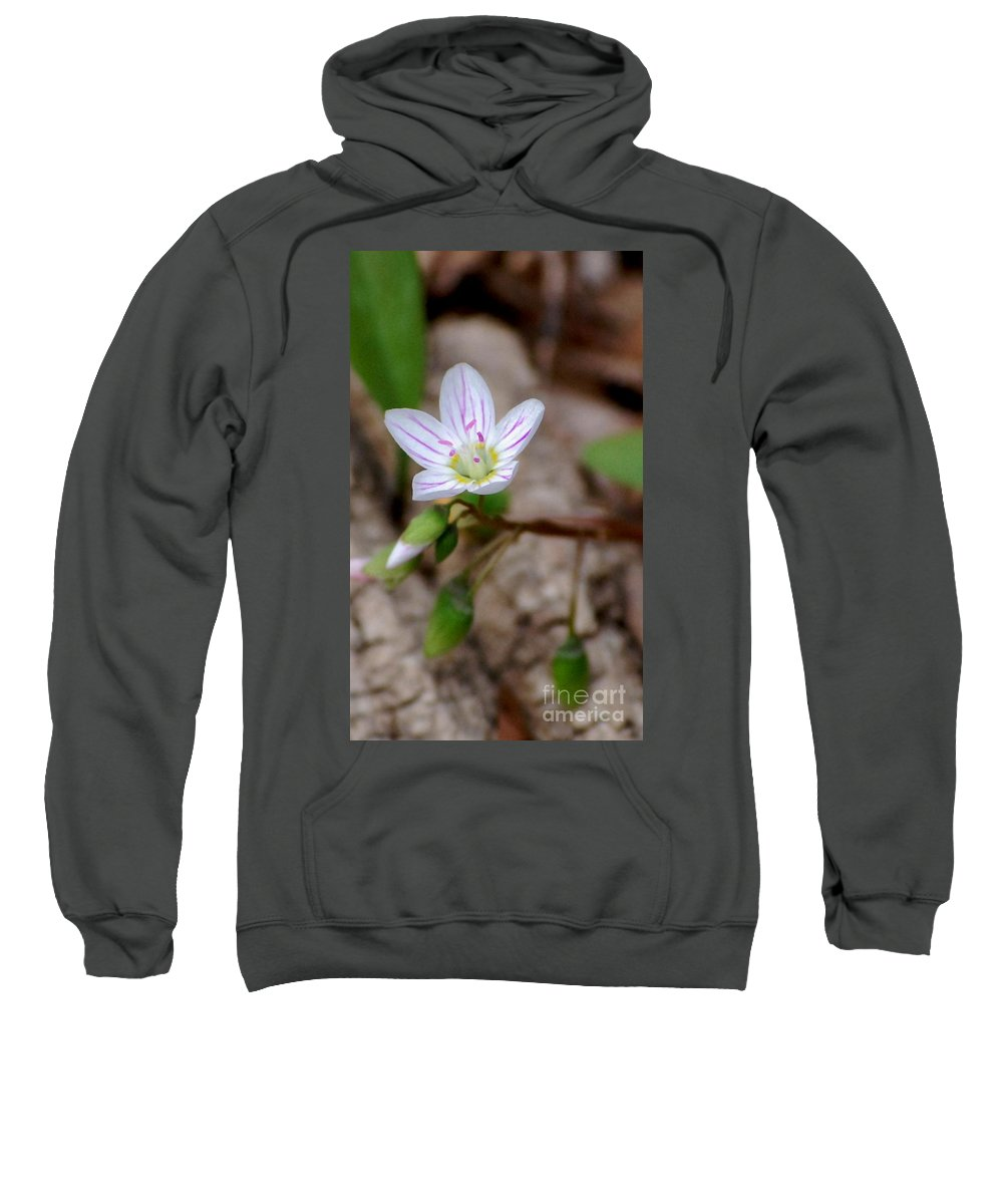 Floral Sweatshirt featuring the photograph Untitiled Floral by David Lane
