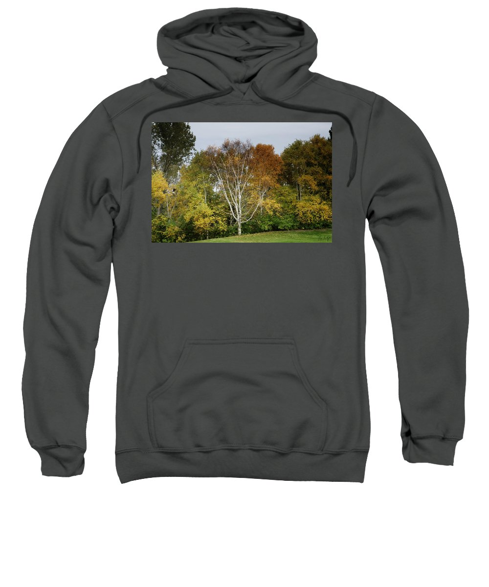 Autumn Sweatshirt featuring the photograph Up Thirteen by Phill Doherty