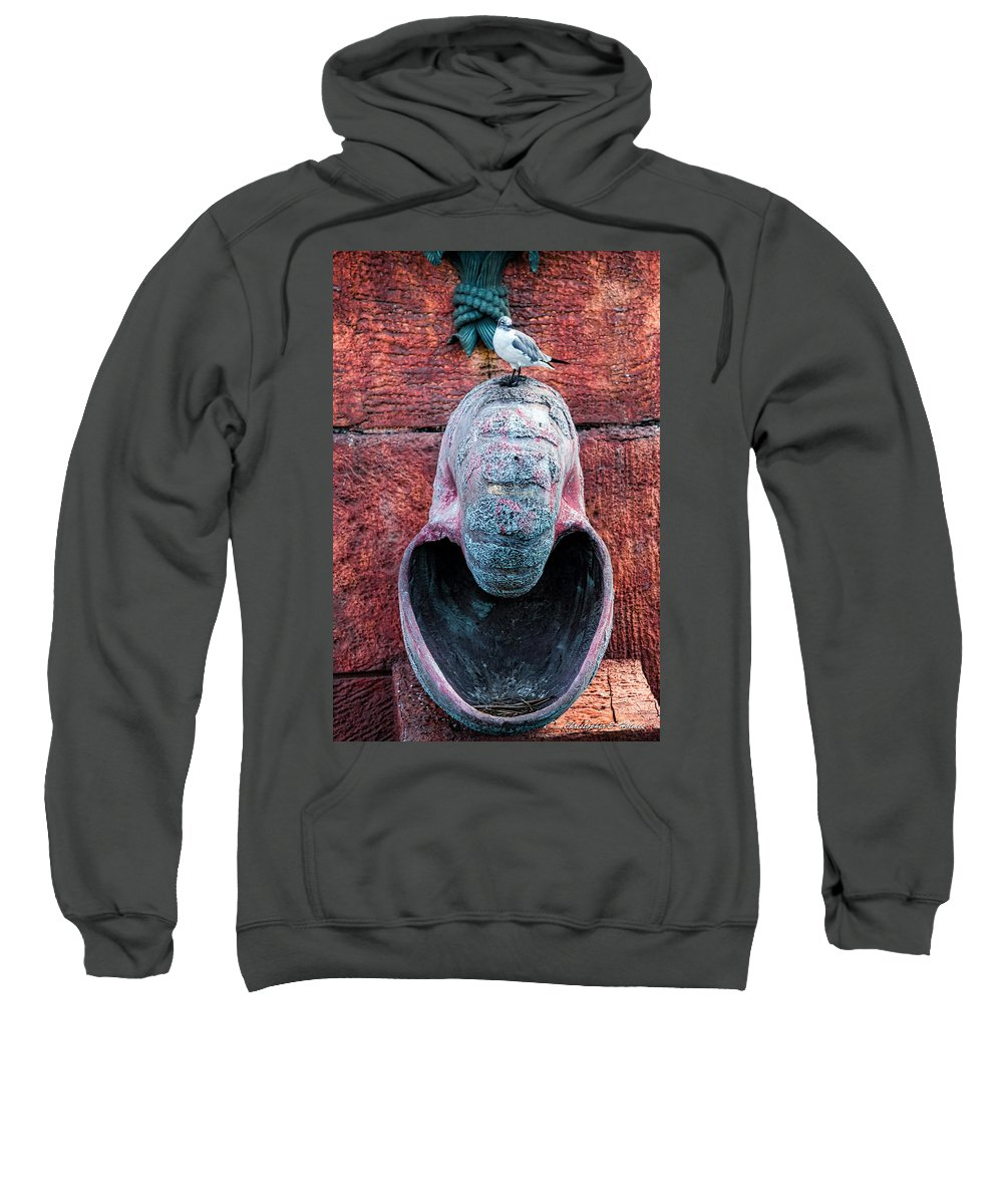 Seagull Sweatshirt featuring the photograph Upon A Shell by Christopher Holmes