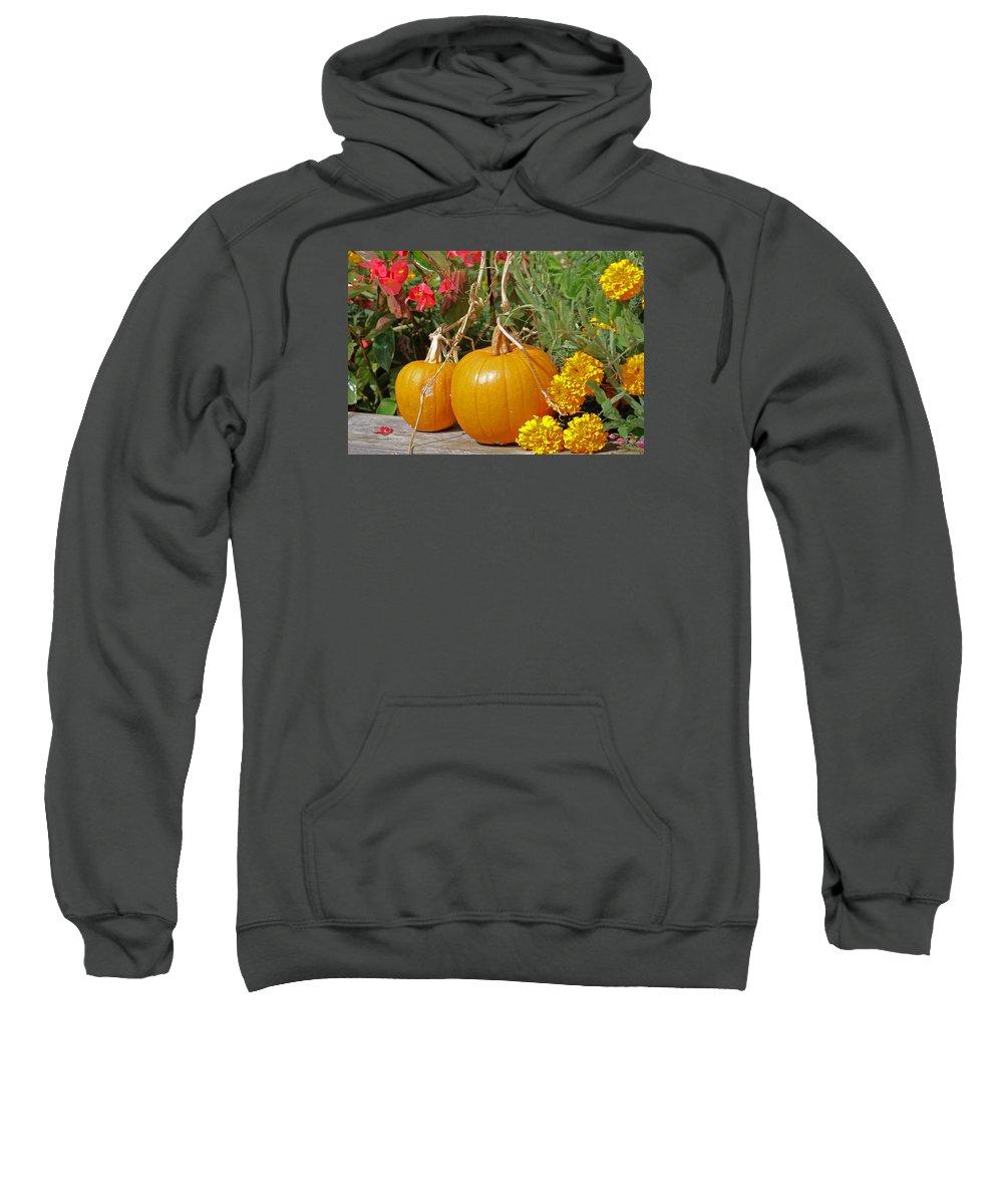 Pumpkins Sweatshirt featuring the photograph Urban Garden by Maria Keady