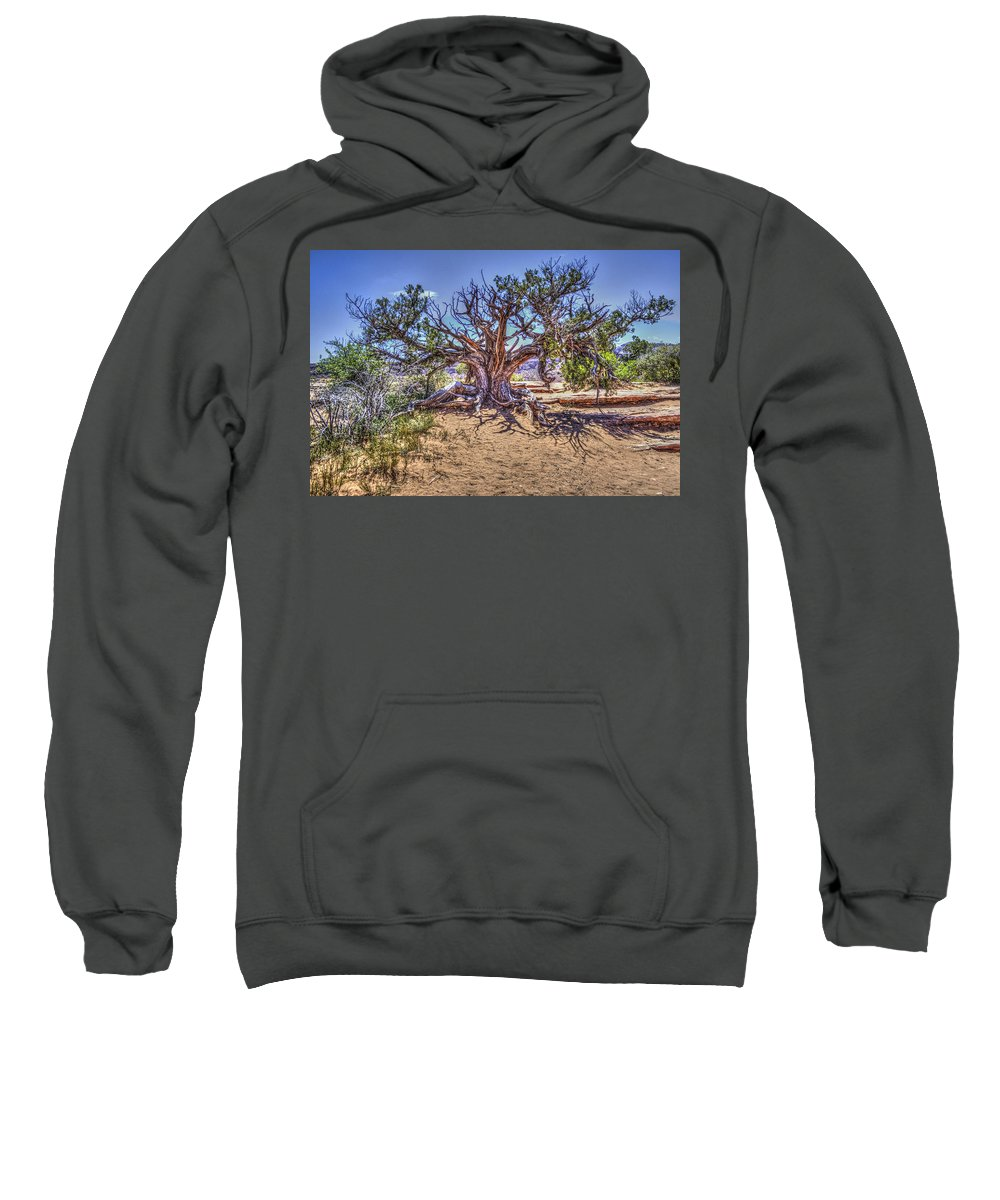 Pictorial Sweatshirt featuring the photograph Utah Juniper On The Climb To Delicate Arch Arches National Park by Roger Passman