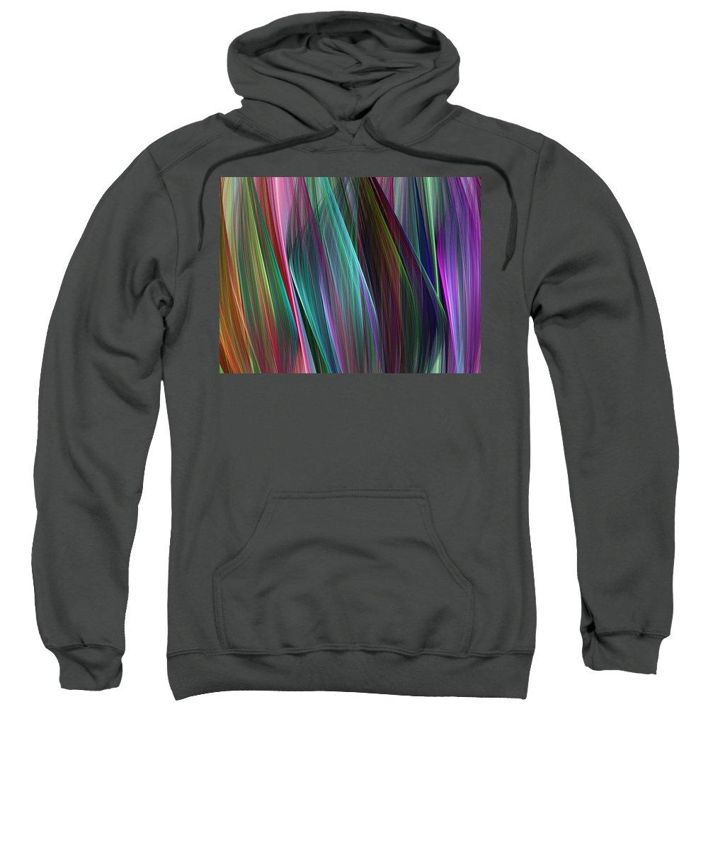 Digital Painting Sweatshirt featuring the digital art Veil Dance by David Lane