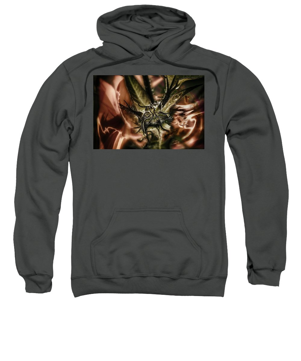 Sweatshirt featuring the photograph Velvet Under.... by Paul Vitko