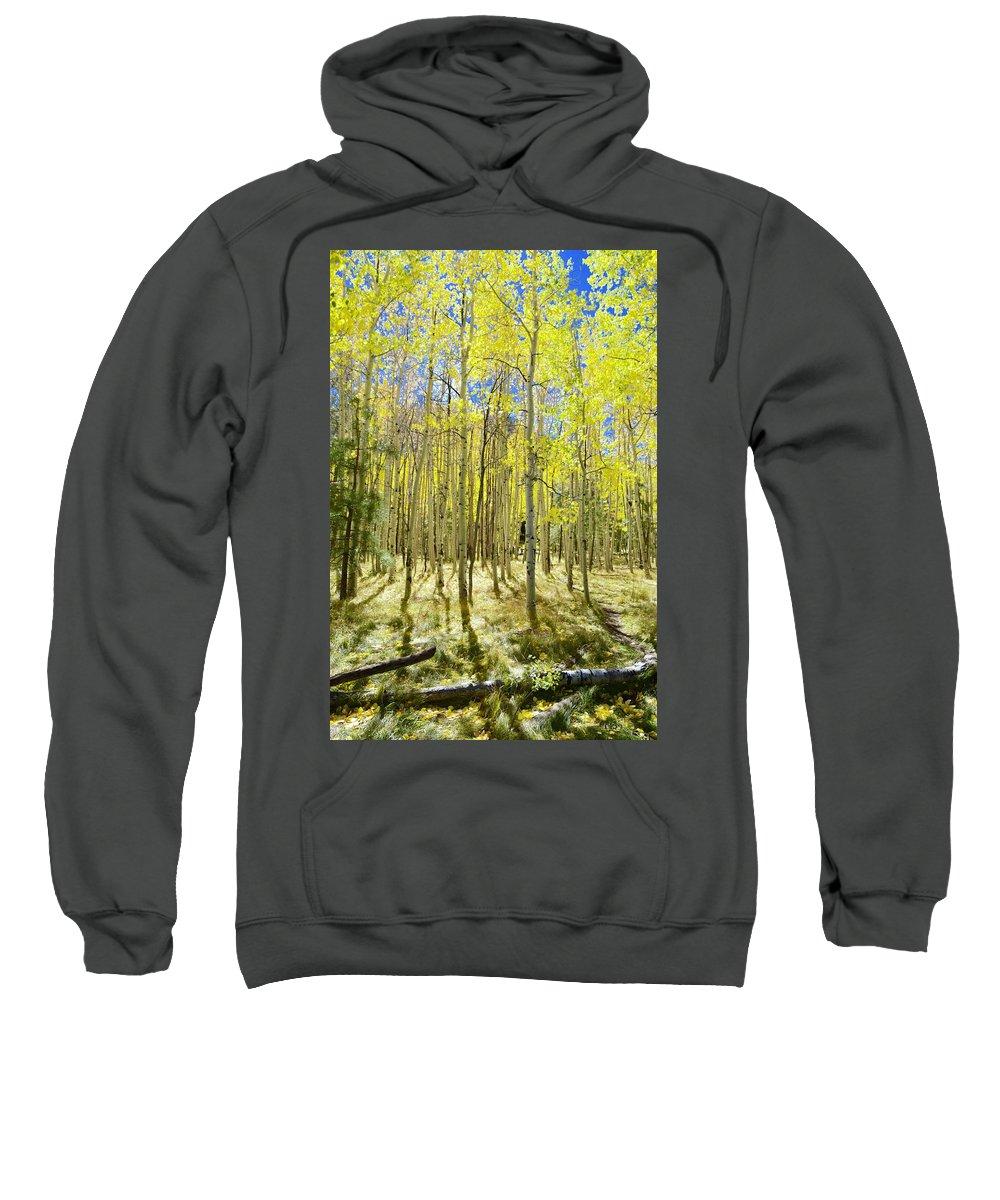 Aspen Sweatshirt featuring the photograph Vertical Aspen Forest by Barbara Stellwagen