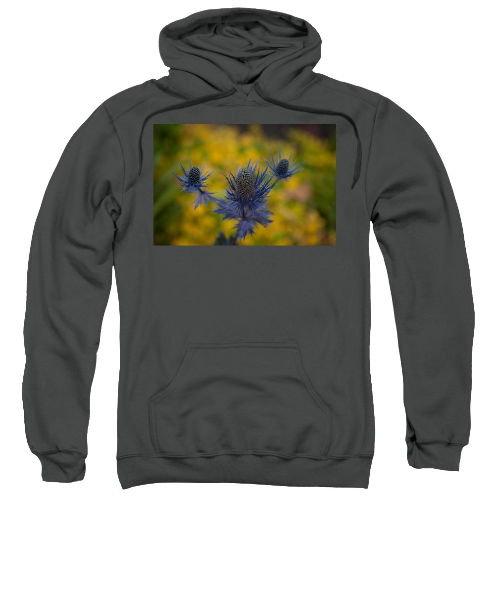 Flower Sweatshirt featuring the photograph Vibrant Thistles by Mike Reid