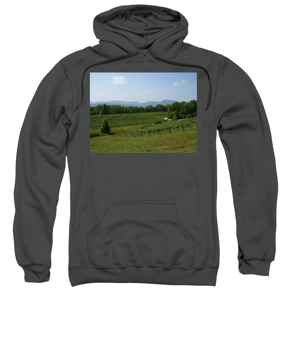 Vineyard Sweatshirt featuring the photograph Vineyard by Flavia Westerwelle